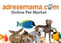 Adresemama.com